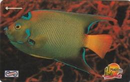 MALASIA. FAUNA MARINA, PECES. Blue Fish. 5$. 1992. 19MSAA. (014) - Peces