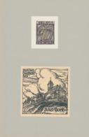Ex Libris Dr. G. Dichler + Karl Bock - Otto Feil - Ex-libris