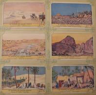 6 Chromo Liebig : Le Sahara Ou Grand Désert. 1943. S 1453 - Liebig