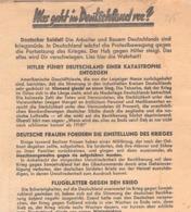 """WWII WW2 Flugblatt Leaflet Листовка Soviet Propaganda Against Germany """"Was Geht In Deutschland Vor?"""" CODE D-17-285 (3) - 1939-45"""