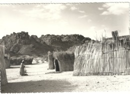E 894  BARDAI   TCHAD    SCÈNE AFRICAINE   PHOTO ORIGINALE - Afrique