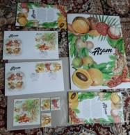 2019 Malaysia Sour Fruit Food Flower Flora Plant Tree Combo Set Folder FDC Stamp Set & MS Miniture Set Stamp Ms MNH - Malaysia (1964-...)