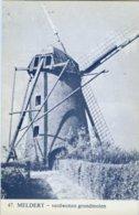 MELDERT Bij Lummen (Limburg) - Molen/moulin - Blauwe Prentkaart Ons Molenheem Van De Verdwenen Stenen Molen - Lummen