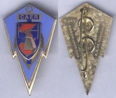 Insigne De La Compagnie Autonome D'Ecoute Et De Radiogoniométrie - Armée De Terre