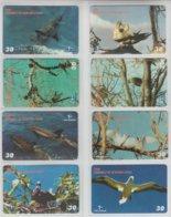 BRASIL 2001 FERNANDO DE NORONHA FAUNA BIRDS DOLPHINES SET OF 8 PHONE CARDS - Otros
