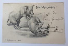 Neujahr, Schwein,  1903 ♥ (7296) - Anno Nuovo