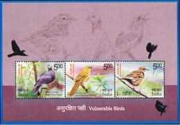 5X INDIA 2017 Vulnerable Birds; Miniature Sheet, MINT - India