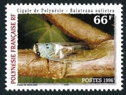 POLYNESIE 1996 - Yv. 516 ** SUP  Faciale= 0,55 EUR - Faune. Cigale  ..Réf.POL24688 - Polynésie Française