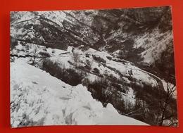 Cartolina Chalet Belvedere - Dardago - 1969 - Pordenone