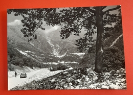 Cartolina Dardago - La Valle Grande - 1966 - Pordenone