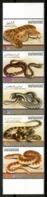 UAE 2012 Emiratos Árabes / Fauna Reptiles Snakes MNH Serpientes Reptils Reptilien / Cu14934  1-8 - Reptiles & Anfibios