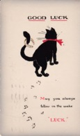 Cats -  Black Cat With Horseshoe & Red Ribbon.      1927. - Chats