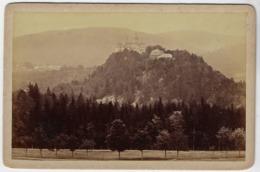 Germany 1894 Cabinet Portrait Photo Schwarzburg Castle In Saalfeld Rudolstadt Sophus Williams Edition Size 11x17 Cm - Saalfeld
