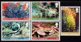 Montserrat - 2010 - Marine Life - Mint Stamp Set - Montserrat