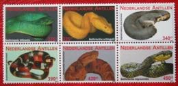 Snake Slangen Serpent Tubi NVPH 1946-1951 2009 MNH POSTFRIS NEDERLANDSE ANTILLEN  NETHERLANDS ANTILLES - Niederländische Antillen, Curaçao, Aruba