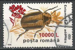 Romania 2000. Scott #4375 (U) Insect, Entomoscelis Adonidis - 1948-.... Repúblicas