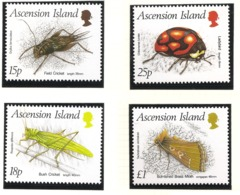Ascension 1988 N° 447 / 50 ** Insectes, Coléoptère, Grillon Provençal, Criquet, Ruspolia, Sauterelle Coccinelle Papillon - Ascension (Ile De L')