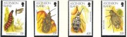 Ascension 1998 N° 712 / 5 ** Insectes, Coléoptère, Pyrale Du Cactus, Mite, Teleonemia, Neltumius, Algarobius, Papillon - Ascension (Ile De L')