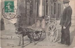 ATTELAGE  DE  CHIEN - LE  LAITIER - - Francia