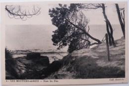 CP1908 - Les Moutiers-en-Retz - Dans Les Pins - Ecrite - Les Moutiers-en-Retz