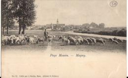 75- Pays Messin - Magny - Sarralbe