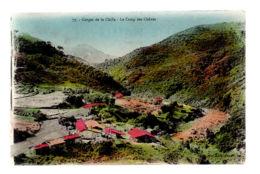 CP2206 - Gorges De La Chiffa - Le Camp Des Chênes - Ecrite - Altri