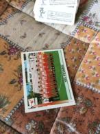 FIGURINA CALCIATORI PANINI - Other Collections