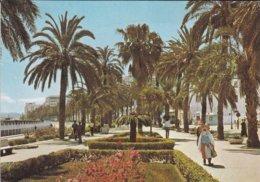 MAROC---TANGER---avenue Des Forces Armées Royales--voir 2 Scans - Tanger