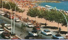 83 - FRÉJUS - La Promenade - Citroën DS - Renault Floride - Renault 8 - Panhard PL 17 - Peugeot 404 - 2 Scans - - Passenger Cars