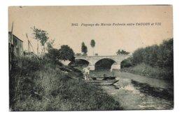 17 – DIVERS : Paysage Du Marais Poitevin Entre Taugon Et Vix N° 3915 - Francia