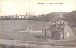 Wenduine Wenduyne -  Le Parc Prince Albert (Star 1909) - Wenduine