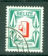 Belize: 1976   Postage Due    SG D6   1c     Used - Belize (1973-...)