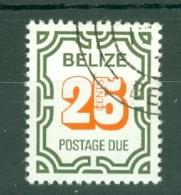 Belize: 1976   Postage Due    SG D10   25c     Used - Belize (1973-...)