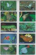 BRASIL 2001 BUTTERFLY CATERPILLAR SET OF 10 PHONE CARDS - Schmetterlinge