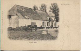 Kalmthout De Wit Hoef Hoelen 56 - Kalmthout