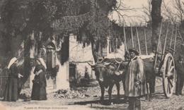 TYPES ET ATTELAGE LIMOUSINS - Autres Communes