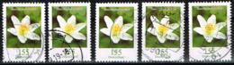 Bund 2019,Michel# 3472 O Blumen: Buschwindröschen - BRD