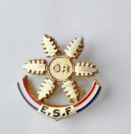 Broche ESF Ecole De Ski Française OR - Disney