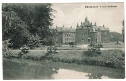 Westerloo - Kasteel De Merode - Circulée - Uitg. Wve Fr. De Coster - 2 Scans - Westerlo