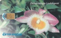 MALASIA. FLORES - FLOWERS. Dendrobium Loddigesii. 20RM. MLS-C-AE. (038) - Flores