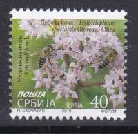 Serbia 2019 Flora Flowers Medicinal Plants Sedum Spectabile Native China Korea Insects Honeybees Bees Fauna Animals MNH - Heilpflanzen