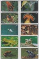 BRASIL 2001 FROGS BIRD HERMIT GUIANAN MONKEY TAMARIN DOLPHIN OPOSSUM - Otros