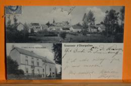 Oberpallen - Souvenir D'Oberpallen - V.Bintz-Meyer Restauration - Rodingen