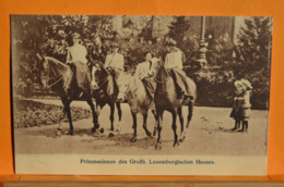Luxembourg - Prizessinnen Des Grofh, Luxemburgischen Hauses - Grand-Ducal Family