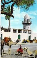 YEMEN - ADEN : Camel Outside Sheikh Othman Mosque - Jolie CPSM Dentelée Colorisée Format CPA 1966 - Asie Asia - Yemen