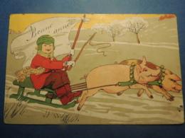 CPA   BONNE ANNE TRAINEAU ATTELAGE DE 2 COCHONS     1906 - Neujahr