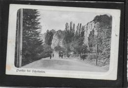 AK 0357  Parthie Bei Schottwien - Verlag Kölz Ca. Um 1904 - Semmering
