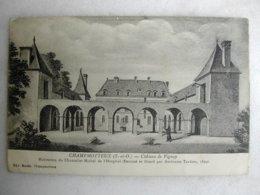 CHAMPMOTTEUX - Château De Vignay - France