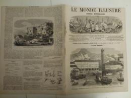 Le Monde Illustré 30 Mars 1867 520 Manisfestation Riva Tyrol Paris Boulevard Du Temple Grand Rabbin Jardin Des Plantes - Books, Magazines, Comics