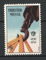 Reklamemarke Triest, Triester Messe, Stricke Am Zughaken - Erinnofilia
